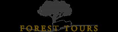 Forest Tours :: Ga mee op avontuur
