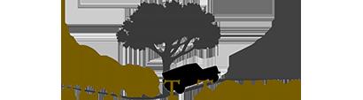 Foresttours logo